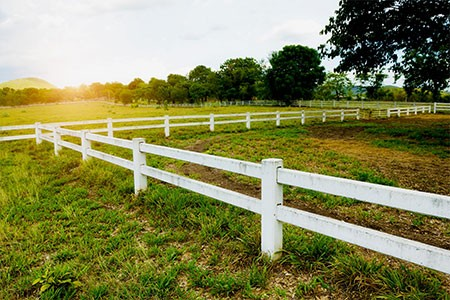 white fence around a grassy field